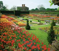 Garten Hampton Court London